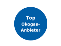 TOP 6 Ökogasanbieter